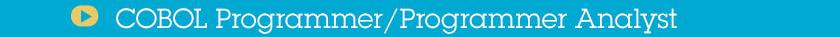 COBOL Programmer Programmer Analyst