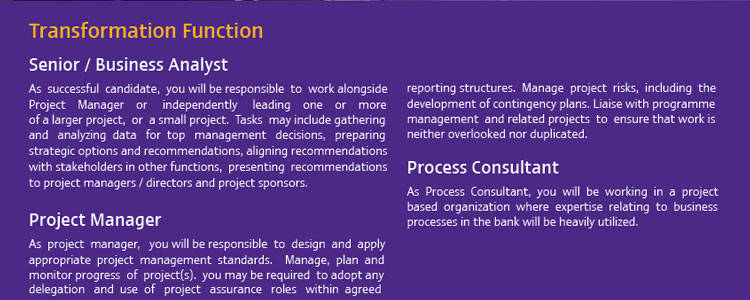SCB Senior Business Analyst jobs