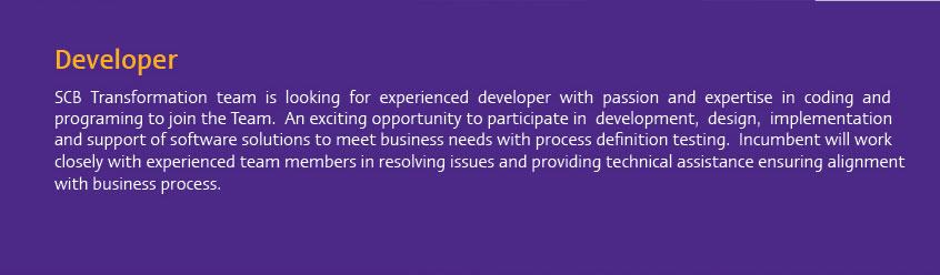 Find SCB developer job